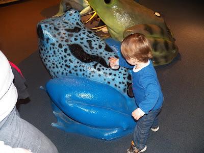 Aquarium Picture 8