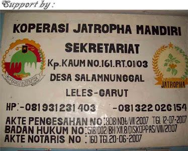 Koprasi Jatropha Mandiri