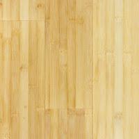 Bamboo Floor2