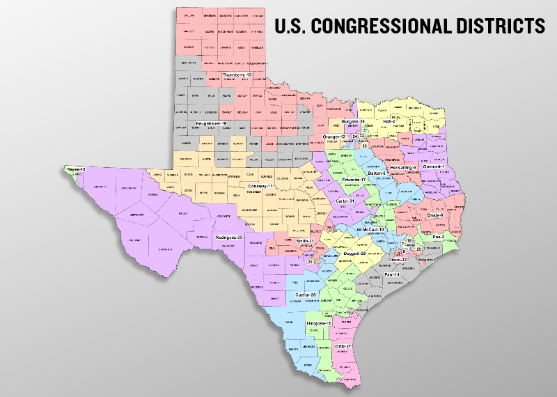 THE BATTLE FOR THE TEXAS CONGRESSIONAL DISTRICTS Conservatives - District map of texas for us house of representatives