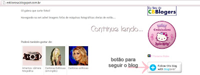 seguindo blog no bloglovin