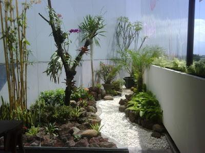 foto 8 jardin conceptual tropical en la azotéa