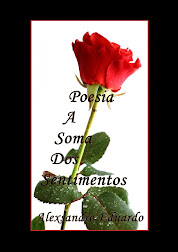 Poesia A Soma Dos Sentimentos