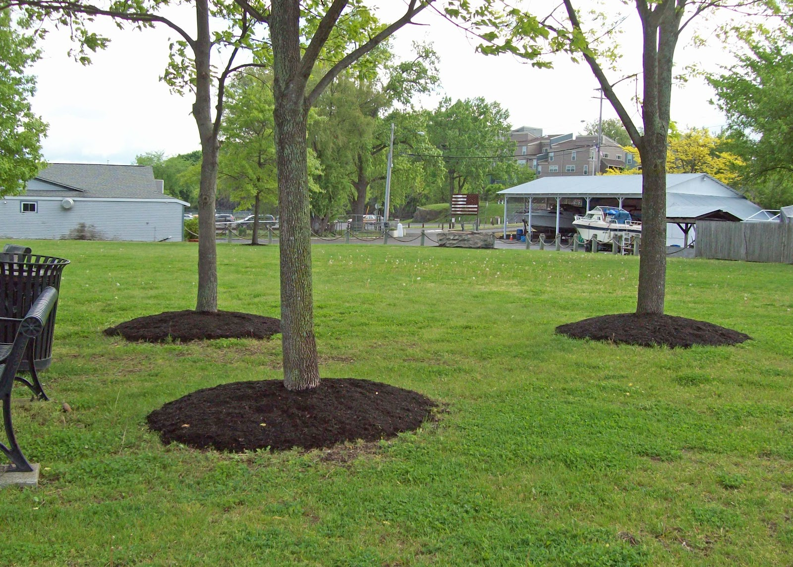 The gossips of rivertown volcano mulch for Around the tree