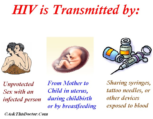 understanding the transmission modes of the hiv virus and the development to aids The causes and consequences of hiv evolution understanding the evolution of the human immunodeficiency virus succession of antiviral agents has made hiv/aids.