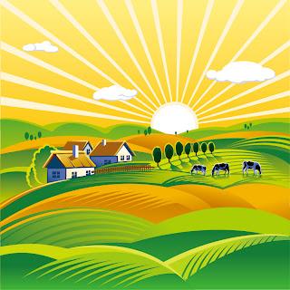 田舎の農園の風景 Rural landscape with vineyard vector