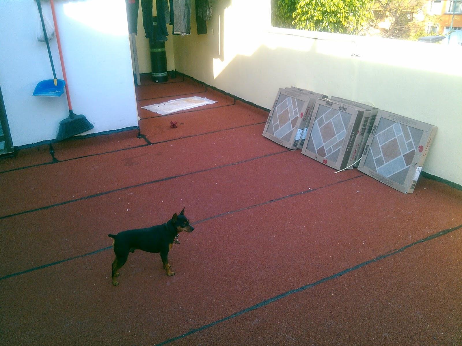 Impermeabilizaci n garantizada - Impermeabilizantes para terrazas ...