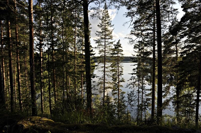 kavereita helsingistä Oulu