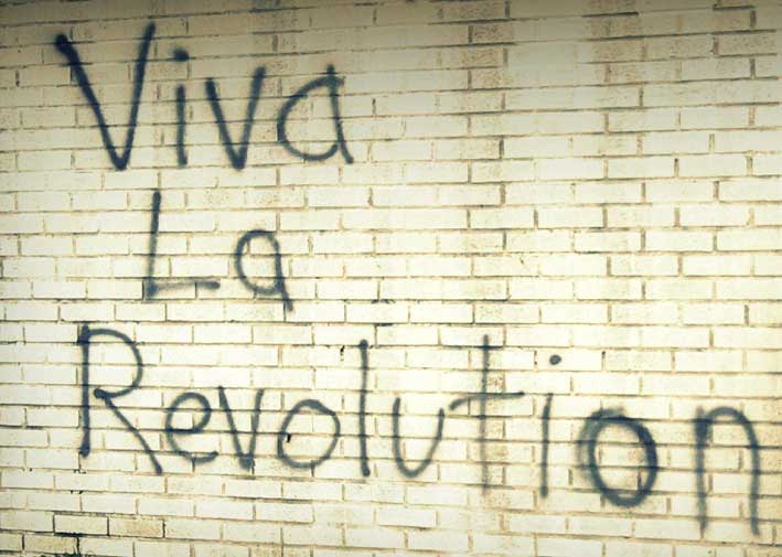 viva_la_revolution_by_surre.jpg