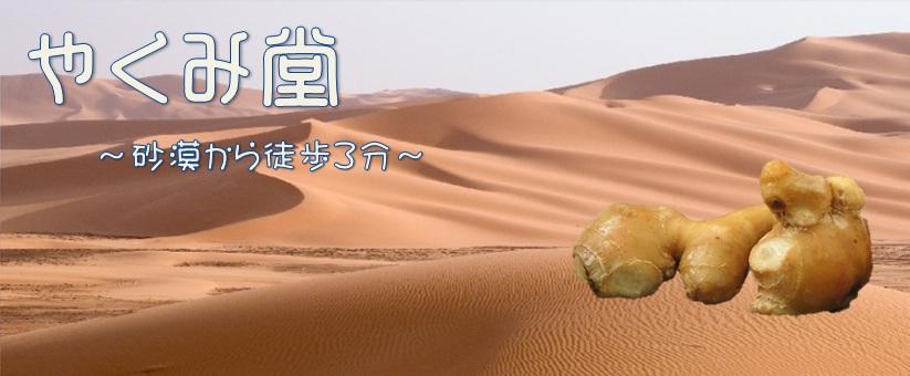 やくみ堂~砂漠から徒歩3分~