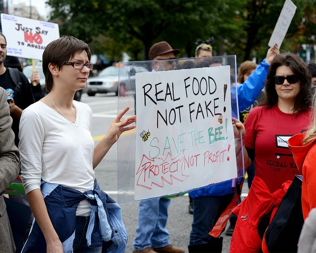 Two demonstrators hold a placard which says real food not fake, save the bee, protect, not profit
