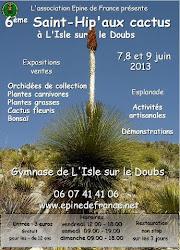 6ème Saint-Hip'aux cactus 2013