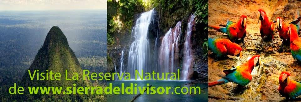Reserva Natural Sierra del Divisor