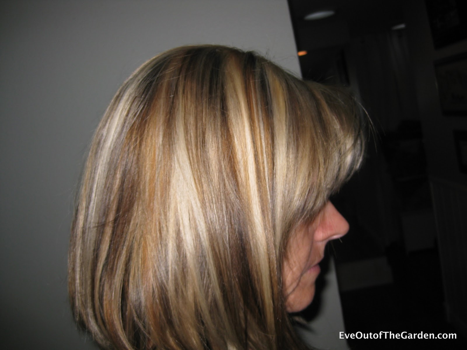 Blonde Highlights and Lowlights - Eve Out of the Garden