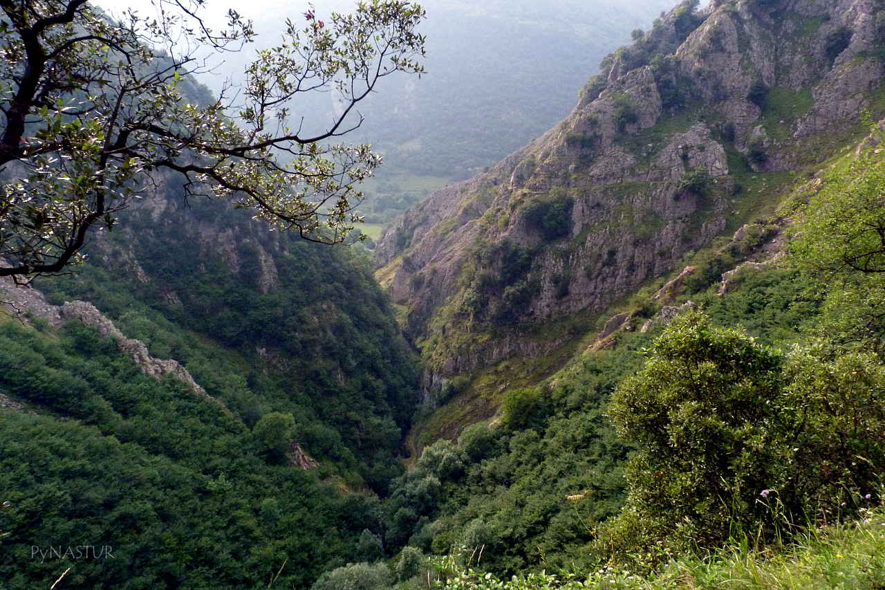 Vista del Desfiladero de Las Xanas desde la Ermita de Pedroveya