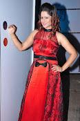 Shilpa Chakravarthy at Appudala Ippudila audio-thumbnail-18