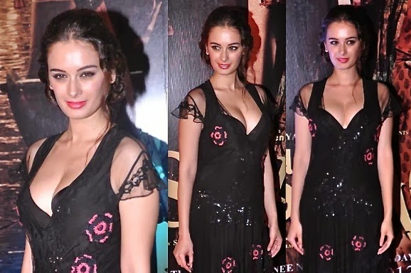 Evelyn Sharma hot cleavage assets