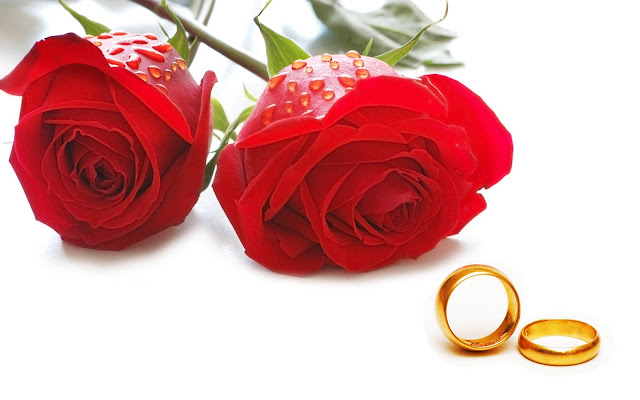 Happy Rose Day 2016 SMS in Spanish | Rose Day Messages in German
