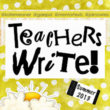 Teachers Write