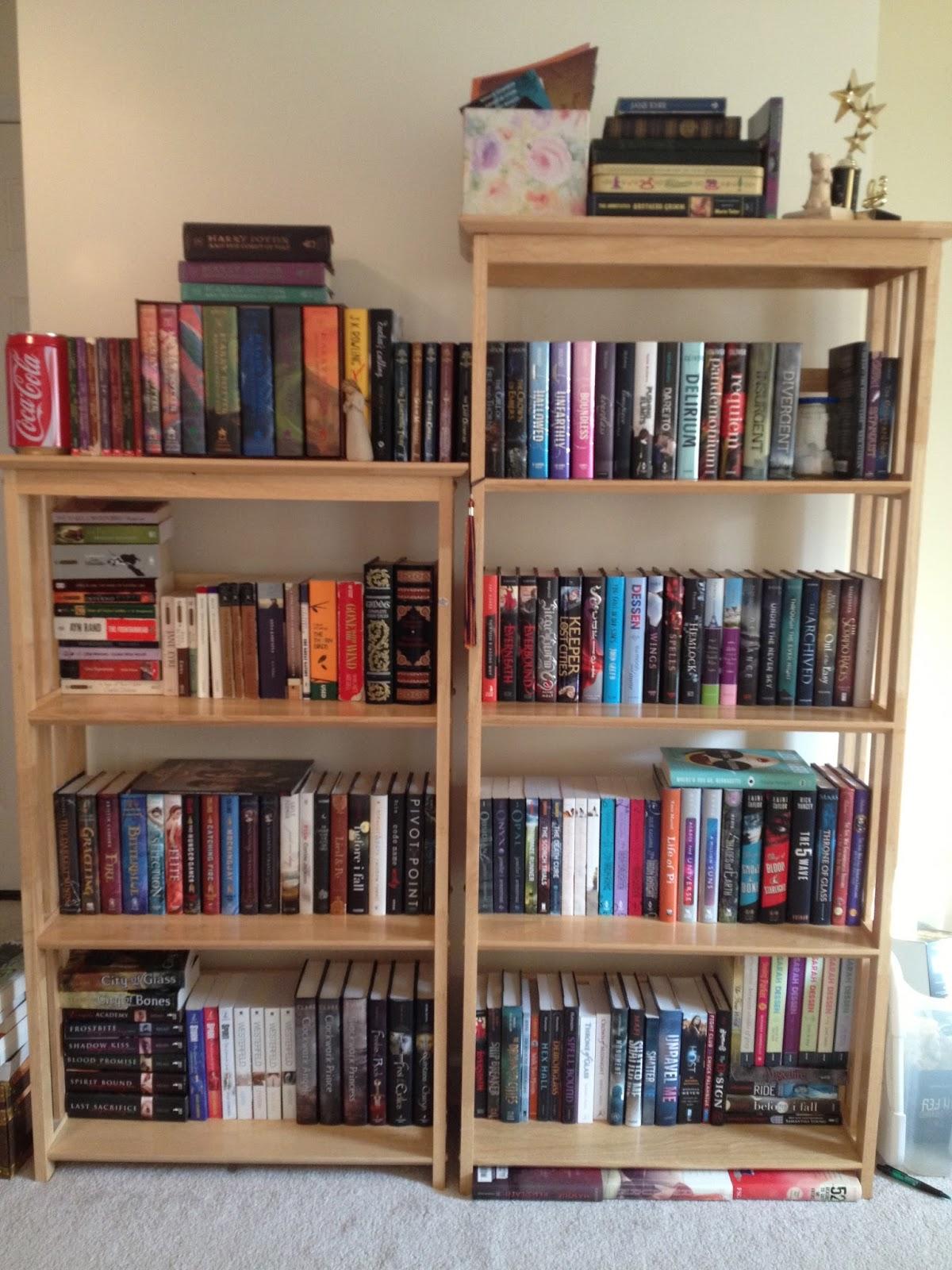 Citrus Reads Book Shelf Tour How Do You Organize Your Shelf