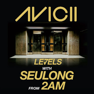 Avicii - Levels With Seulong 슬옹 From 2AM