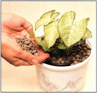 Насыпьте побольше глиняных гранул, чтобы скрыть внутренний сосуд и индикатор уровня воды