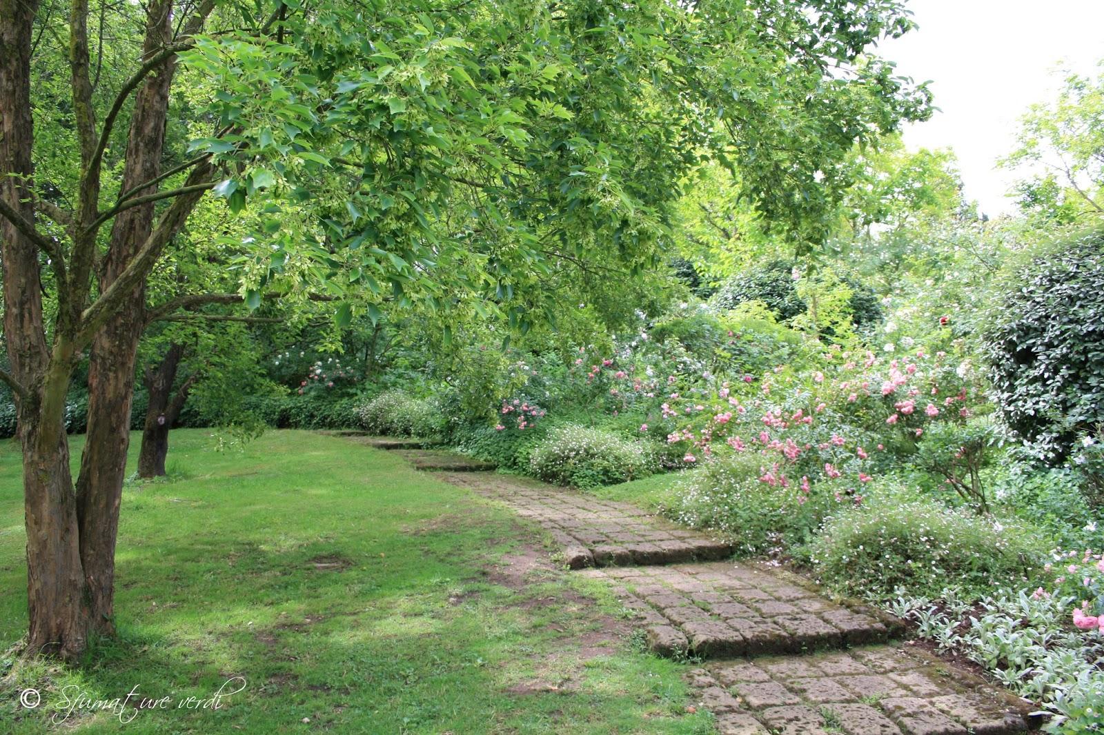 I giardini della landriana sfumature verdi for Disegnare giardini