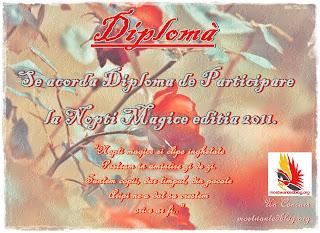 "Diploma ""Nopti Magice"""