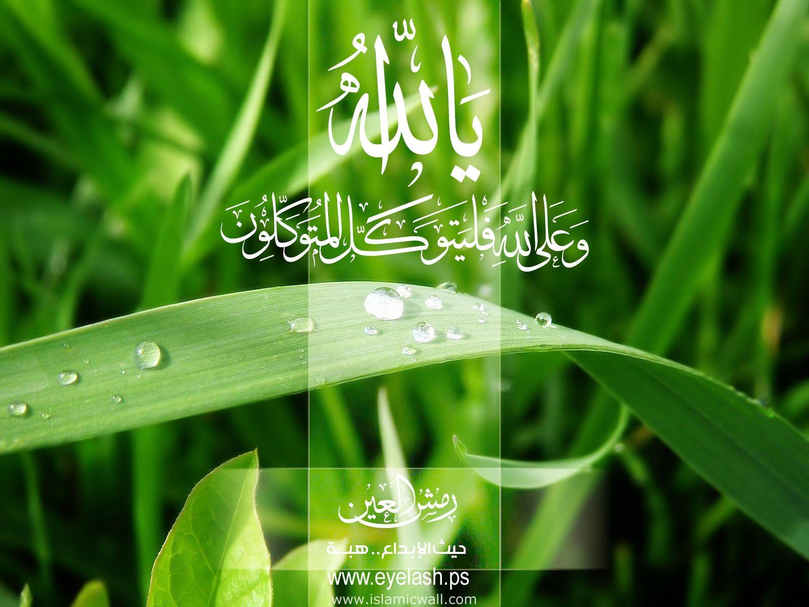 http://3.bp.blogspot.com/-vBNbx_quBn8/Tl-AKExZzrI/AAAAAAAABAA/AHg6gZbDwbM/s1600/Yeh_Allah.jpg
