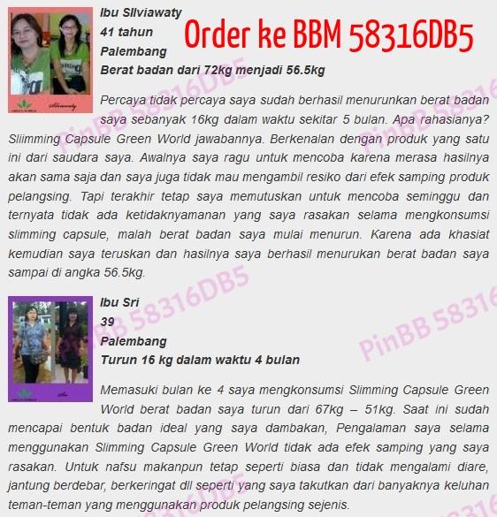 Bbm 58316db5 Jual World Slimming Capsule Asli Pt Green World Global