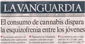 haxixe cannabis maconha esquizofrenia