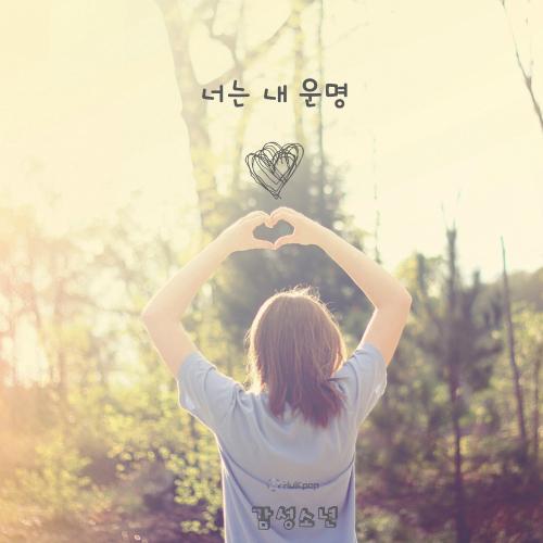 [Single] Sentimental Boy – You Are My Destiny