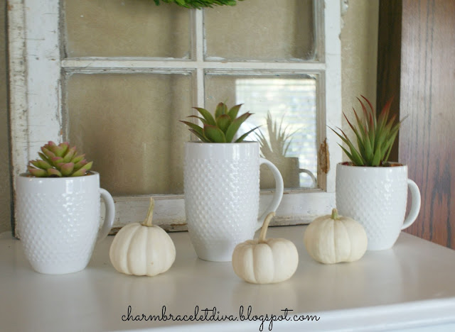Succulent Display Coffee Mugs Teacups