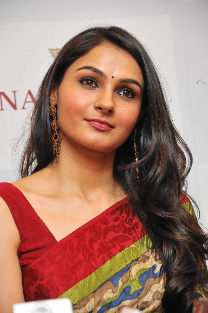 enticing and charming Andrea cute look in saree