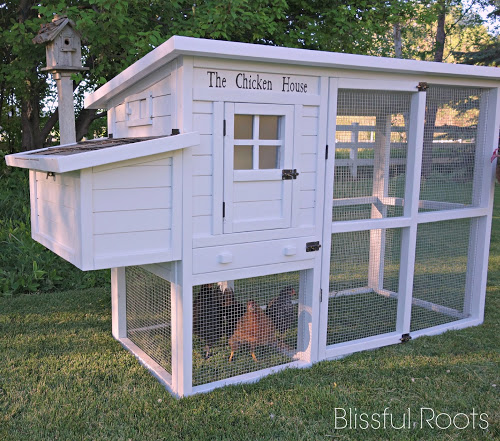 10 do it yourself projects for Cute chicken coop ideas