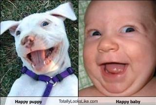 funny baby happy