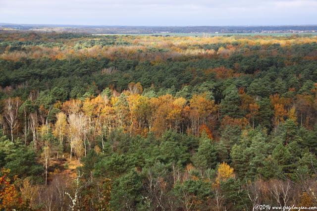 Paysage d'automne, Trois Pignons, Arbonne-la-Forêt, (C) 2014 Greg Clouzeau