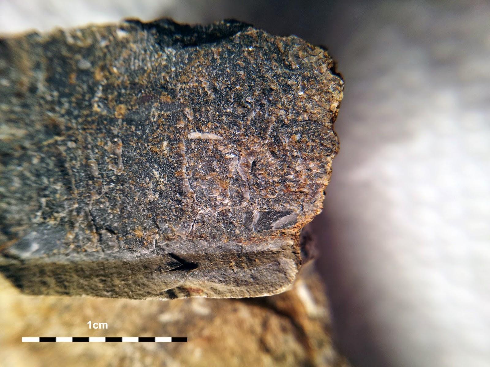 PBGeos Geology Studies: Greywacke, Arkose & Mudstone ...