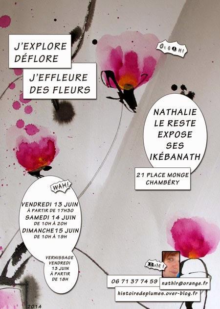 Exposition juin 2014 Nathalie Le Reste