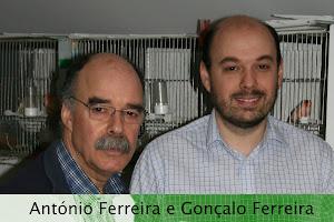 Canaril Desportivo Ferreira