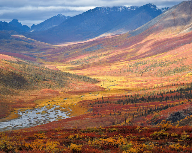 North Klondike Valley Yukon - Canada