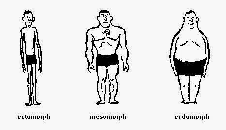 3 tipe bentuk tubuh manusia untuk membangun tubuh ideal,tubuh ideal,ectomorph.endomorpf,mesomorfp