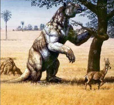 prehistoria de argentina Megatherium