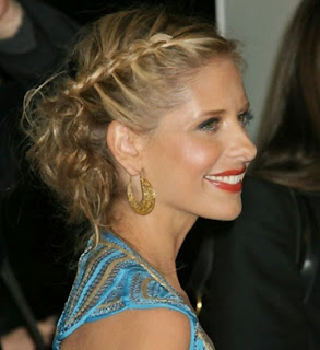 Bump and Combo Braid Hairstyle