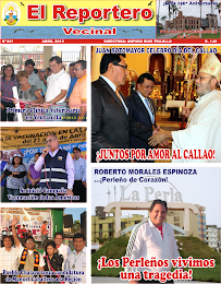 EDICIN N 41 - MES ABRIL 2013