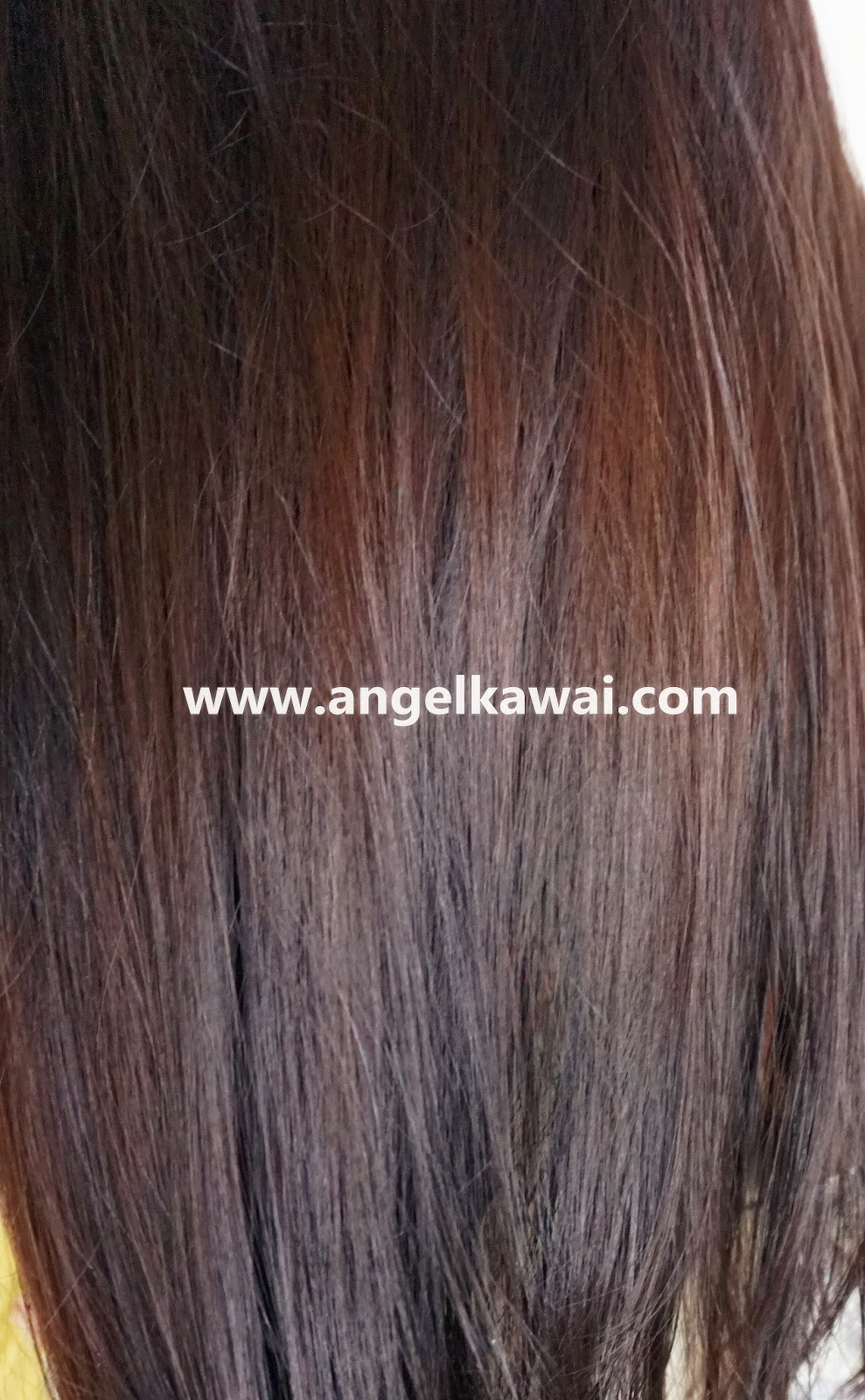 Angelkawai39s Diary GARNIER Color Naturals Cream Hair Color 316