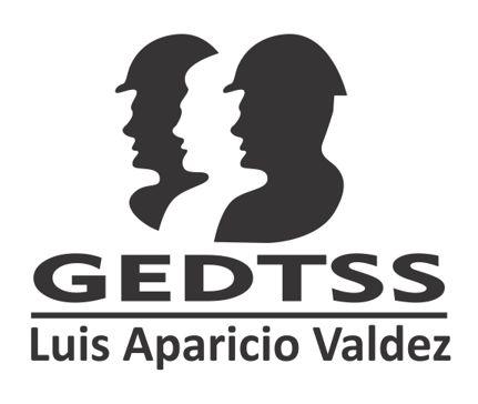 GEDTSS - Noticias