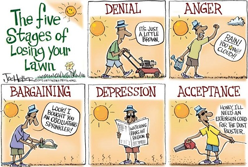 The five Stages of Losing your Lawn (Credit: www.facebook.com/iheartcomsci)
