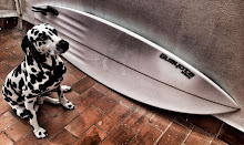 GUAYOTA SURFBOARDS (Gran Canaria)