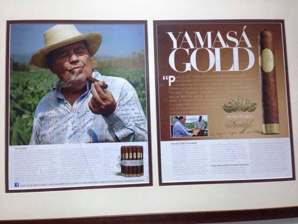 Yamasa` Gold